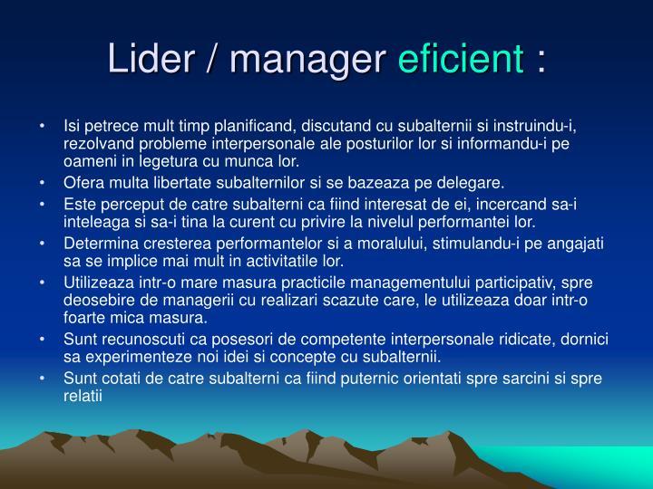 Lider / manager