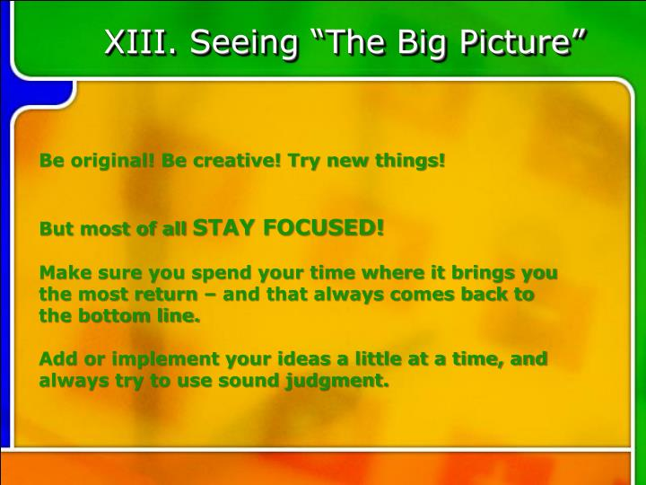 "XIII. Seeing ""The Big Picture"""