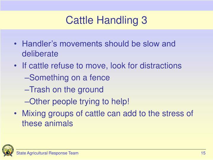 Cattle Handling 3