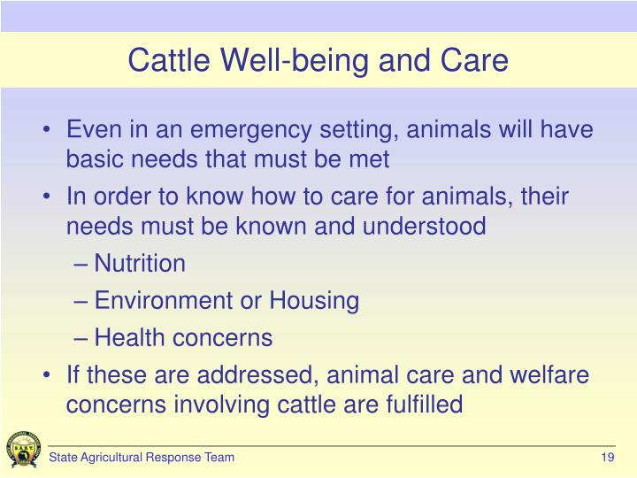 Cattle Well-being and Care