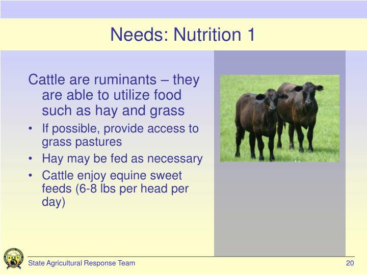 Needs: Nutrition 1