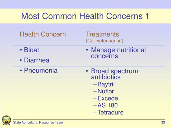 Most Common Health Concerns 1