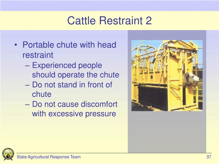 Cattle Restraint 2