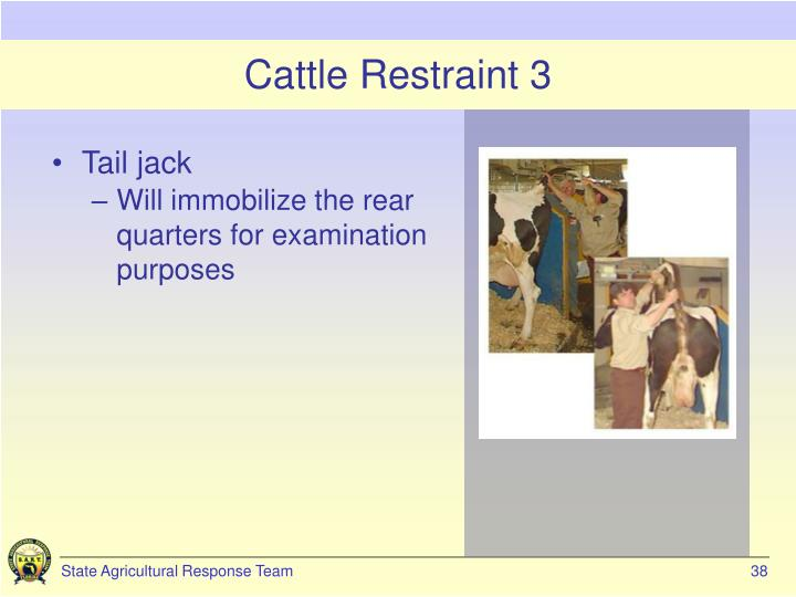Cattle Restraint 3