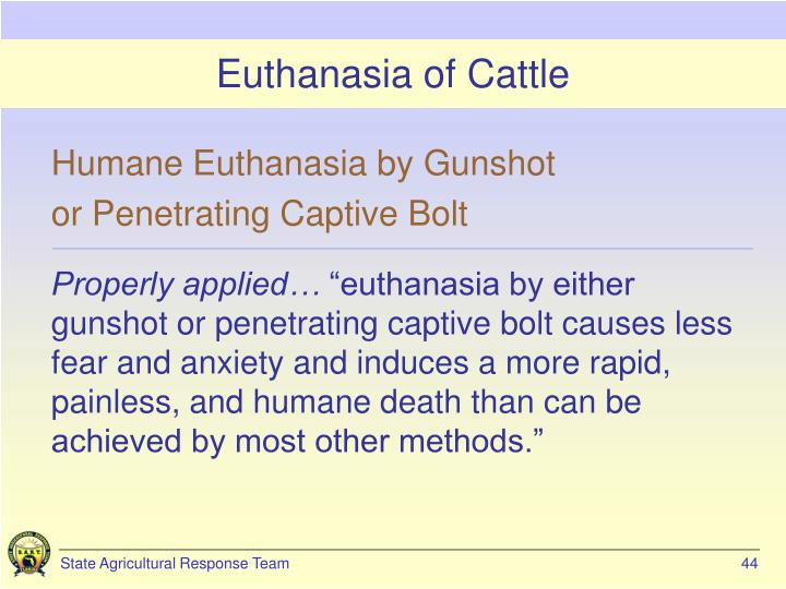 Euthanasia of Cattle