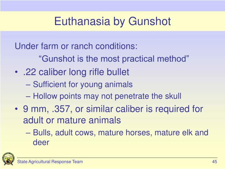 Euthanasia by Gunshot