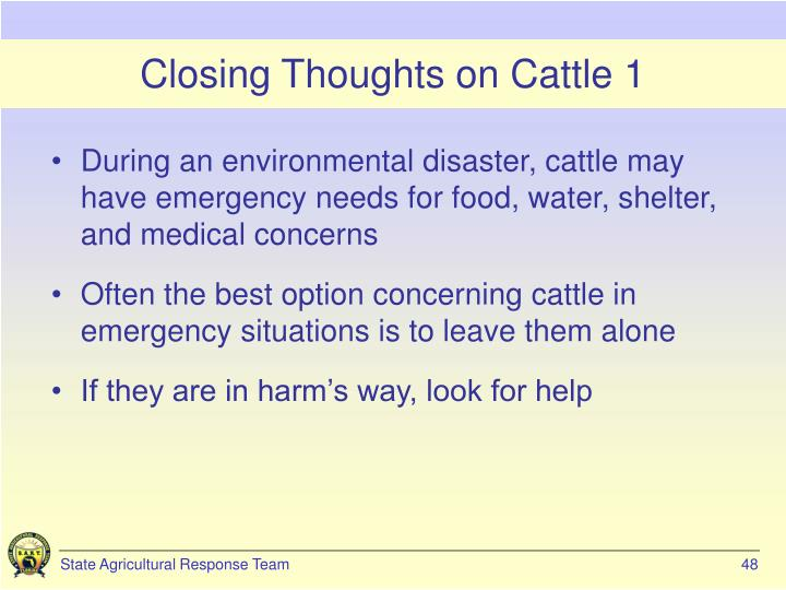 Closing Thoughts on Cattle 1