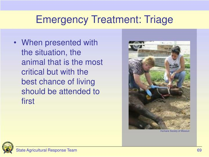 Emergency Treatment: Triage