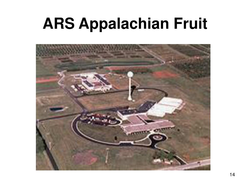 ARS Appalachian Fruit