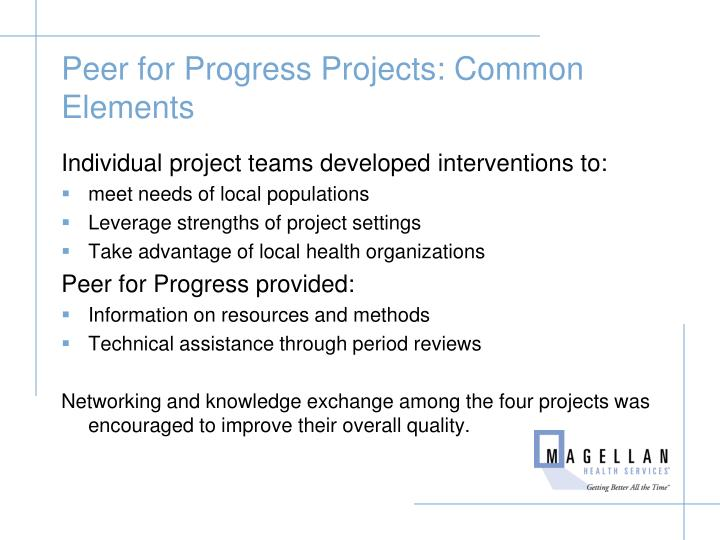 Peer for Progress Projects: Common Elements