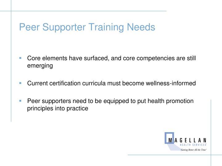 Peer Supporter Training Needs