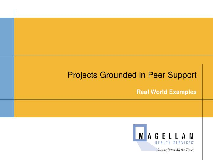Projects Grounded in Peer Support