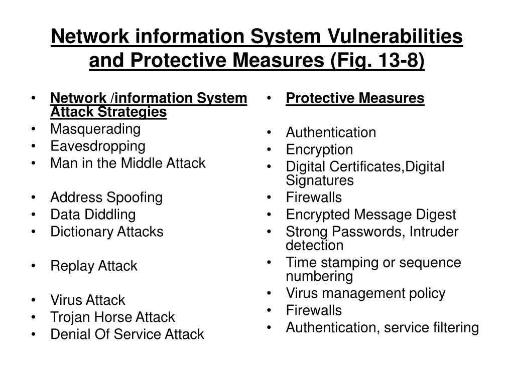 Network /information System Attack Strategies