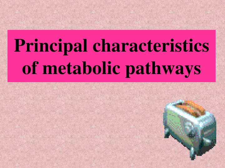 Principal characteristics of metabolic pathways