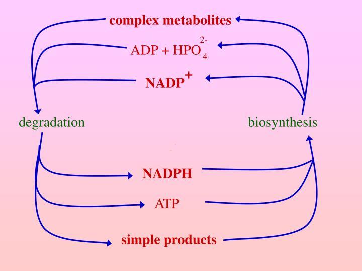 complex metabolites