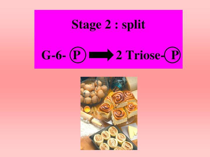 Stage 2 : split
