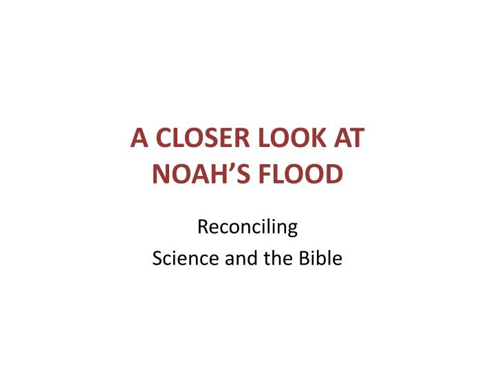 A closer look at noah s flood
