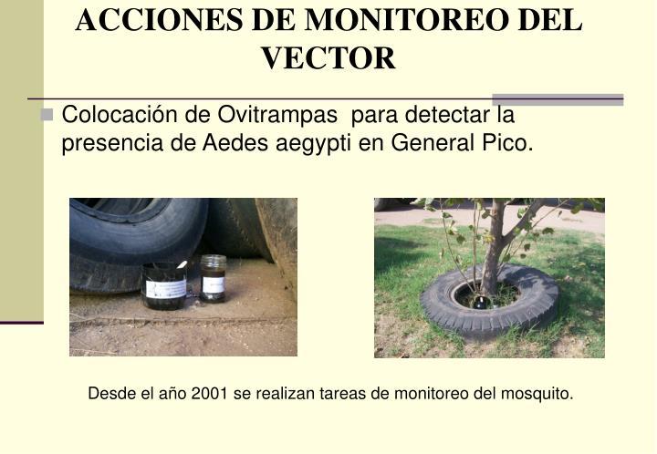 ACCIONES DE MONITOREO DEL VECTOR