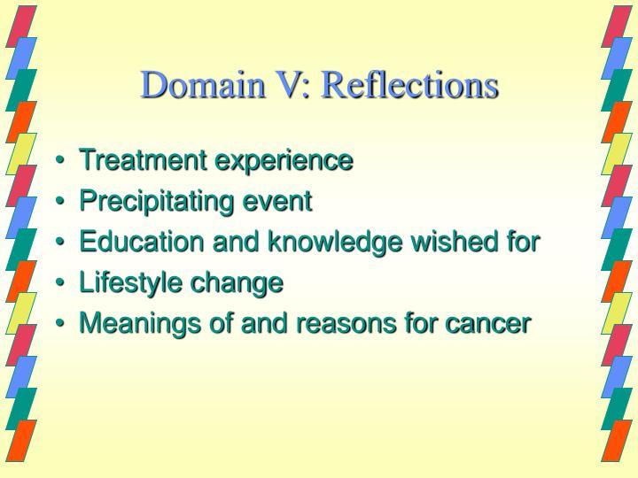 Domain V: Reflections