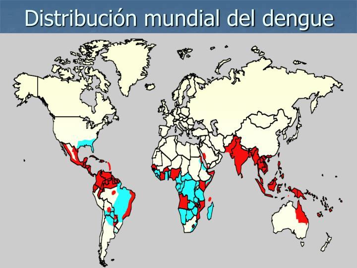 Distribución mundial del dengue