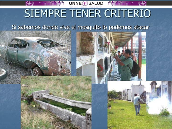 SIEMPRE TENER CRITERIO