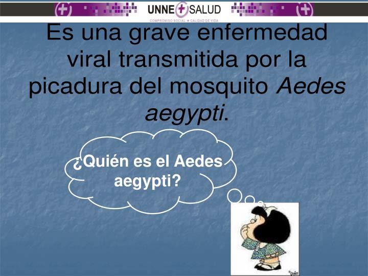 ¿Quién es el Aedes aegypti?