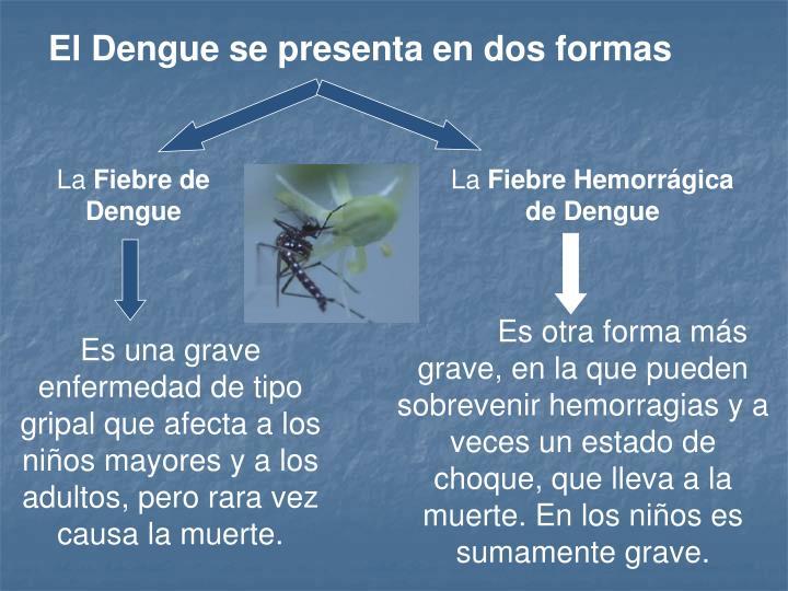 El Dengue se presenta en dos formas