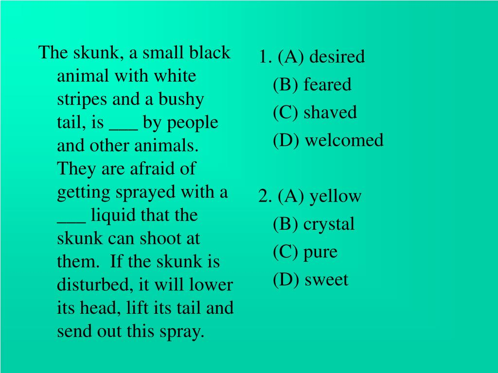 The skunk, a small black animal with white stripes and a bushy tail, is ___ by people and other animals. They are afraid of getting sprayed with a ___ liquid that the skunk can shoot at them.  If the skunk is disturbed, it will lower its head, lift its tail and send out this spray.