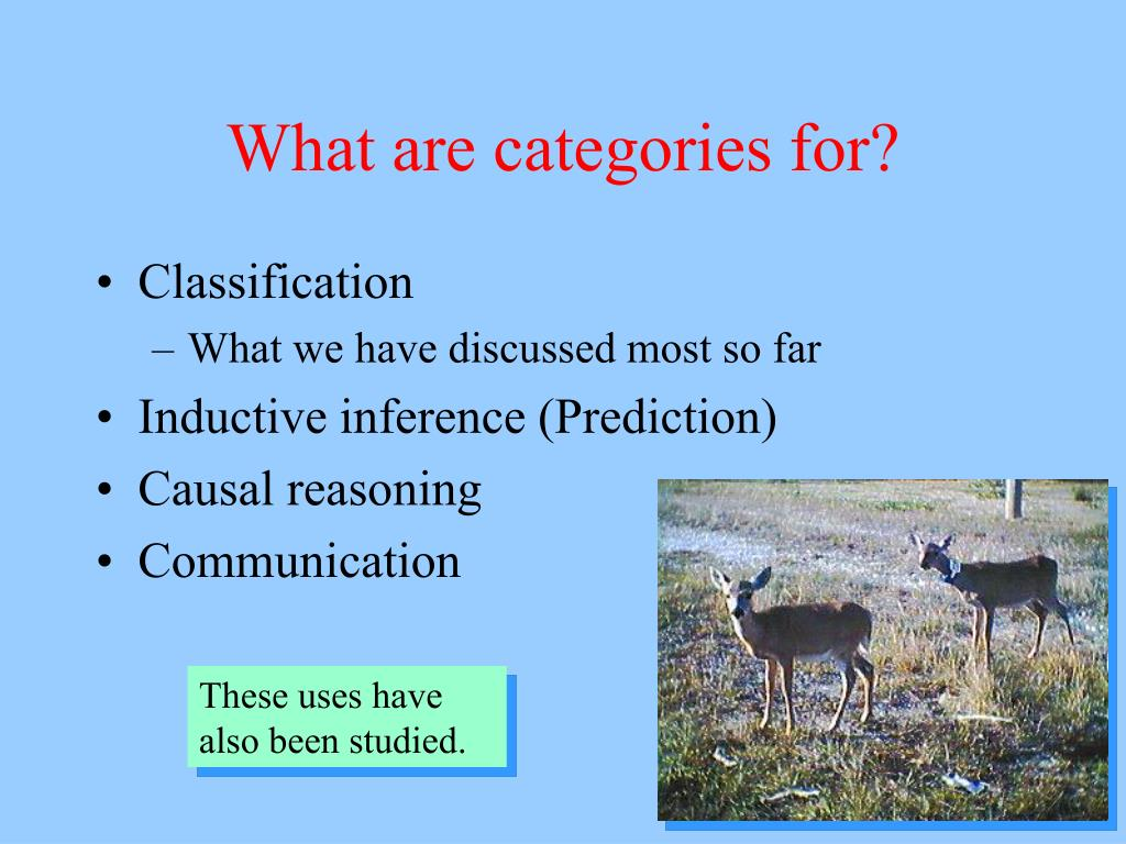 What are categories for?