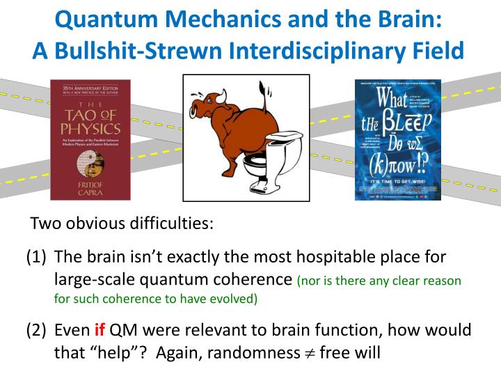 Quantum Mechanics and the Brain: