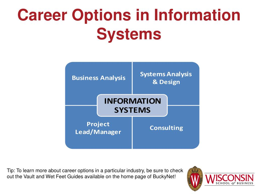 Career Options in Information Systems