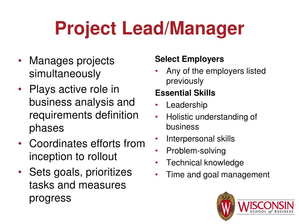 Project Lead/Manager