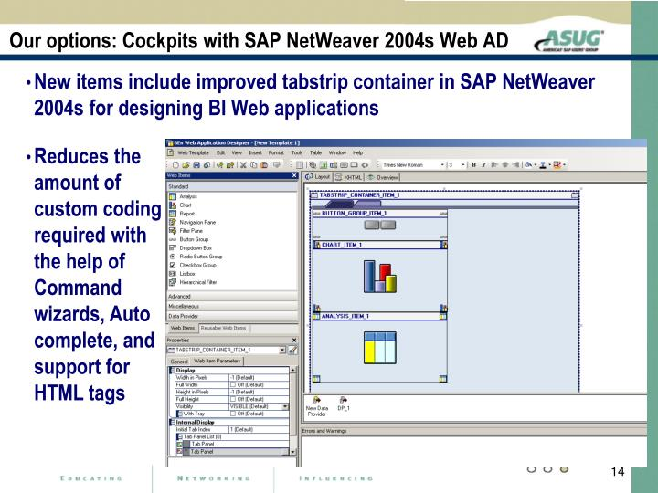 Our options: Cockpits with SAP NetWeaver 2004s Web AD