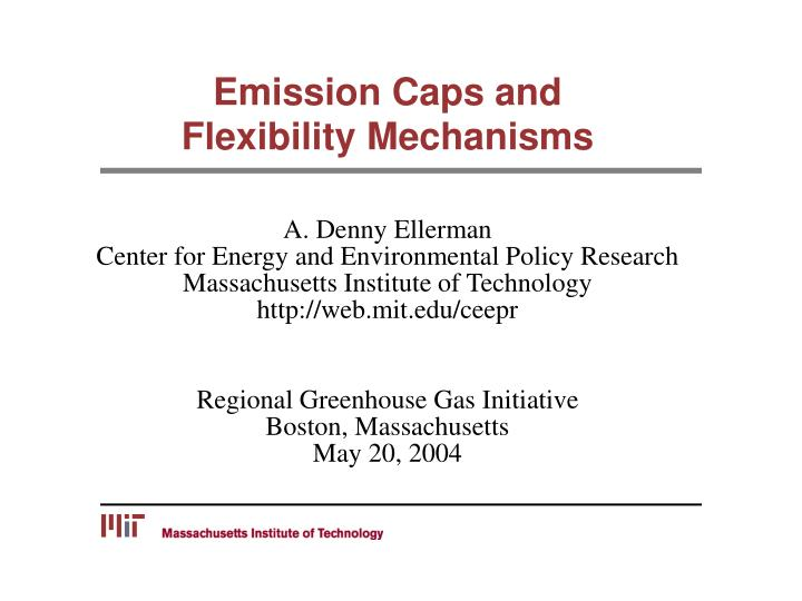Emission caps and flexibility mechanisms