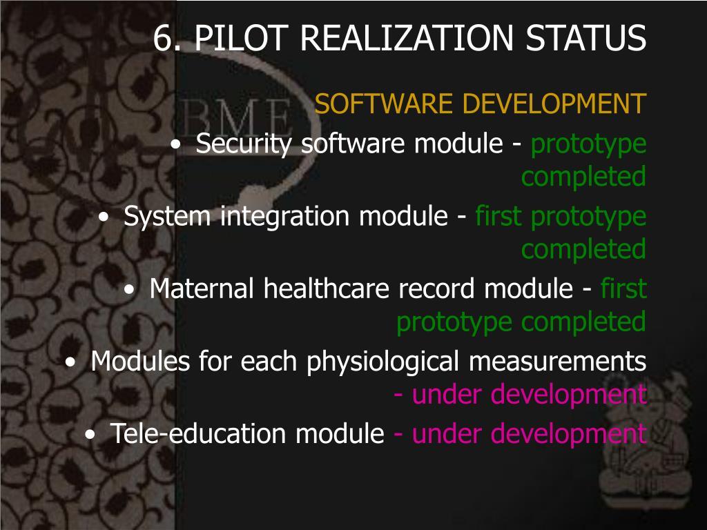 6. PILOT REALIZATION STATUS
