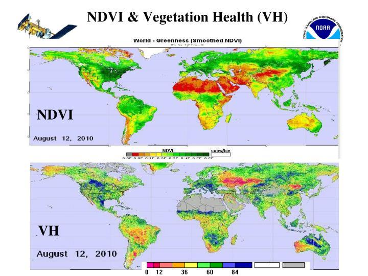 NDVI & Vegetation Health (VH)
