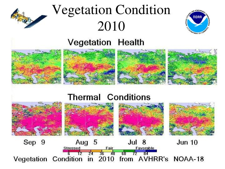 Vegetation Condition 2010