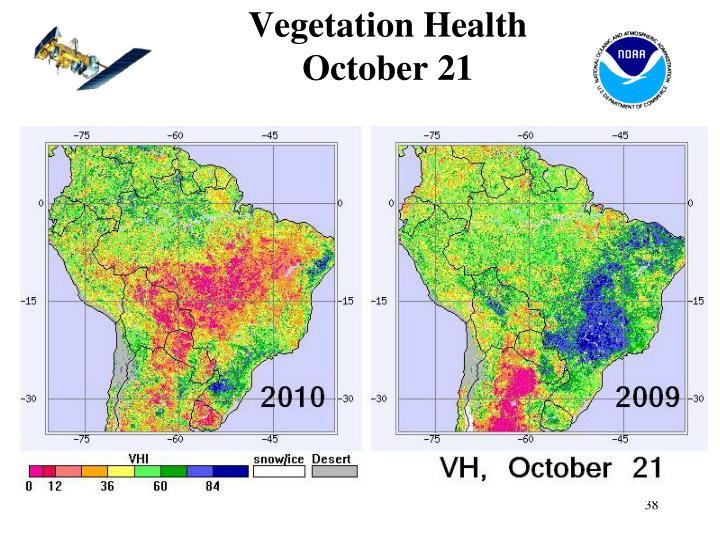 Vegetation Health