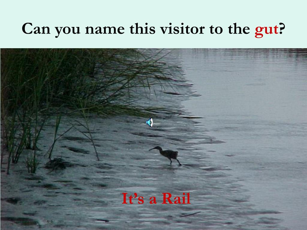 Can you name this visitor to the