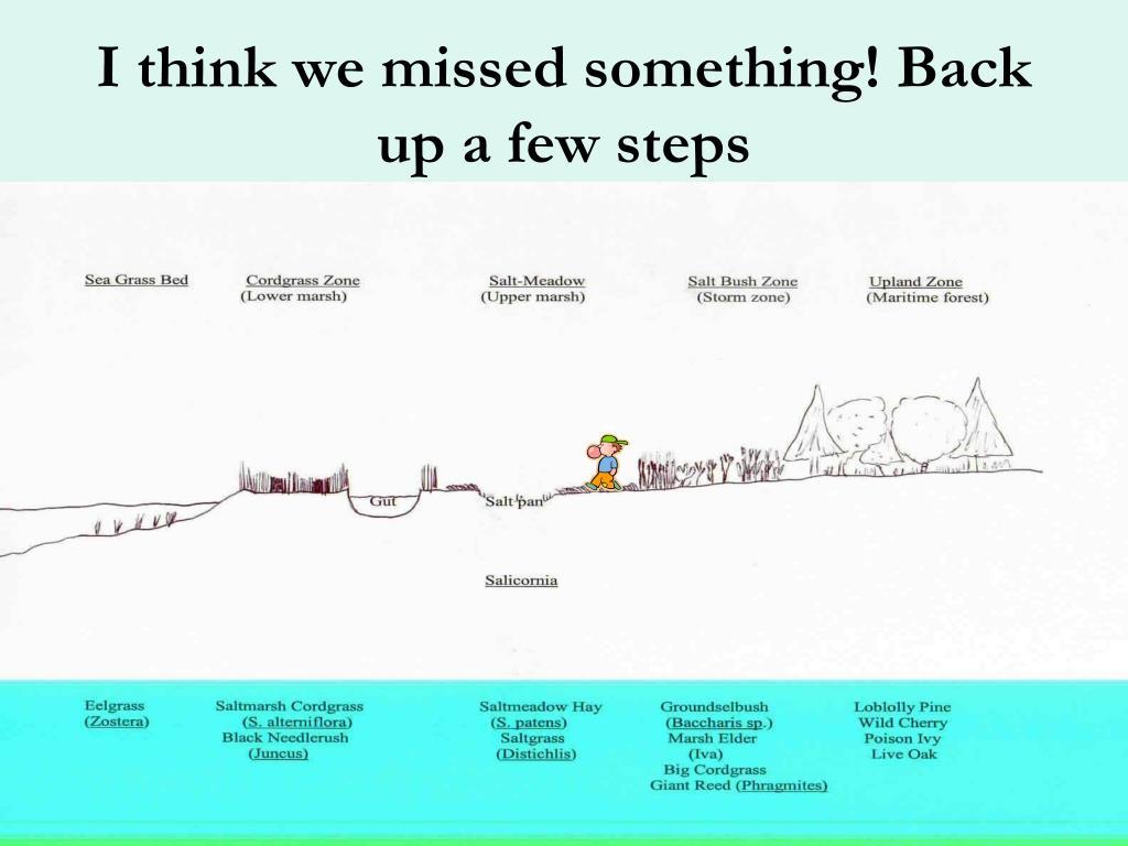 I think we missed something! Back up a few steps