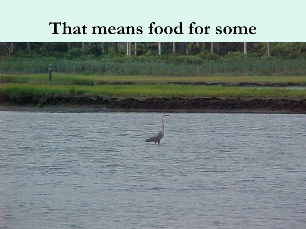 That means food for some