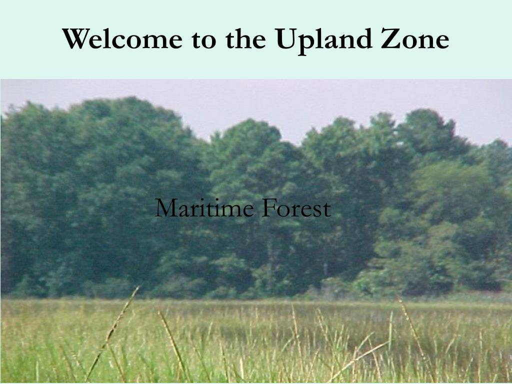 Welcome to the Upland Zone