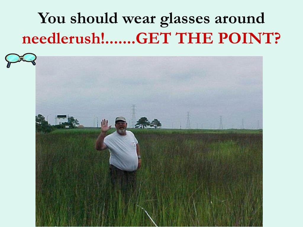 You should wear glasses around