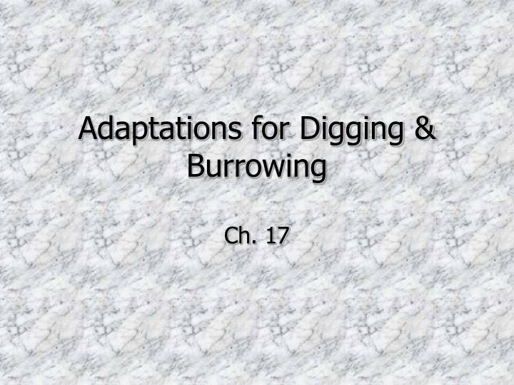 Adaptations for digging burrowing