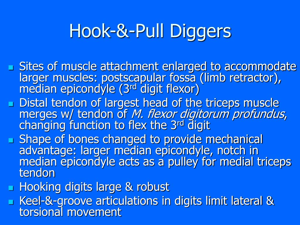 Hook-&-Pull Diggers