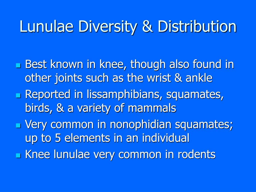 Lunulae Diversity & Distribution