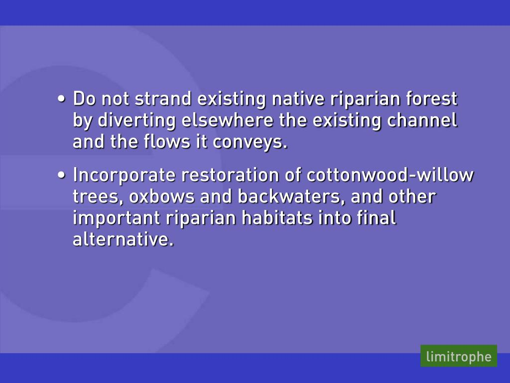 Do not strand existing native riparian forest    by diverting elsewhere the existing channel and the flows it conveys.