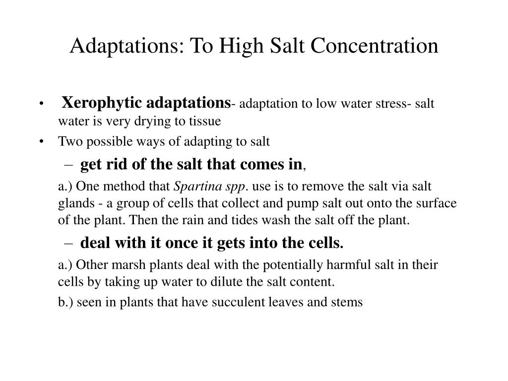 Adaptations: To High Salt Concentration