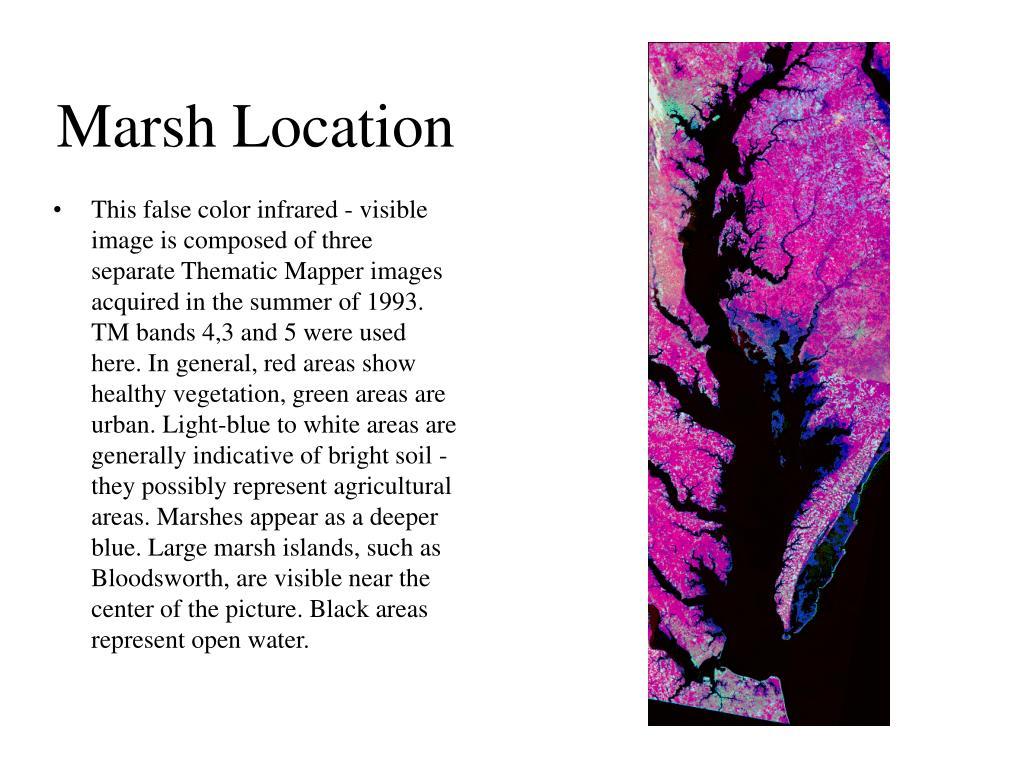 Marsh Location
