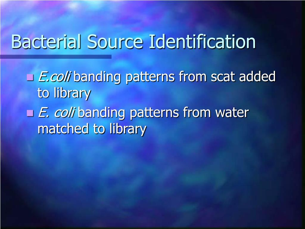 Bacterial Source Identification